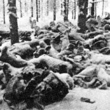 Начало советско-финской войны. Русская Идея
